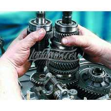 Assembly And Modification Of Sport Gearboxes And Transfer Cases